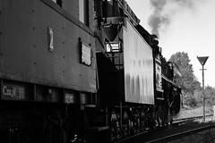Eisenbahnfest XV (Michael@H) Tags: berlin eisenbahnfest 2019 class03 baureihe03 462 2c1 032155 borsigberlin lokomotivfabrikborsigberlin deutschereichsbahn drb betriebsbahnhofschöneweide