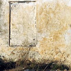 (akiruna) Tags: akiruna annemiehiele wall texture yellow abstract avril