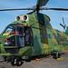 RoAF IAR-330L SOCAT Puma 79