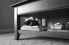 Just Right (aaron_gould) Tags: minolta srt101 bw blackandwhite nikkor decoration camera absoluteblackandwhite light old shadows books