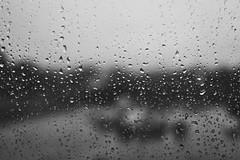KC Rain (glpease) Tags: