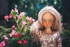 anxiety 16 (toriasoll) Tags: bjd abjd doll dollphoto dollphotography minifee mnf minifeechloe chloetan mnfchloe