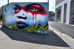 Mother Earth - Climate Change (Trish Mayo) Tags: murals paintedwalls climatechange ralphserrano artistikznewyork bronx