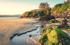 Rocky headland (masonandy2015) Tags: donegal ireland bay beach coast coastal evening headland inlet lowtide peaceful rocks rocky sand seaweed steps stream sunlight tidal tide trees