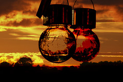 Sunset (lightersideofdark) Tags: dark silhouette globes balls dusk endoftheday sunset lights outside outdoors rays sunrays goldenhour glow