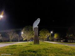 The Owl Statue on Friday morning (garydlum) Tags: owlstatue publicart