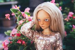anxiety 15 (toriasoll) Tags: bjd abjd doll dollphoto dollphotography minifee mnf minifeechloe chloetan mnfchloe