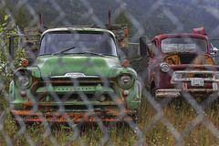relics (rockinmonique) Tags: fence car truck old rust relic green red mountains caribooregion moniquewphotography canon canont6s tamron tamron45mm copyright2019moniquewphotography ur
