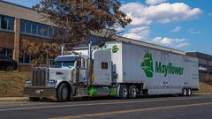 Peterbilt 379 (NoVa Truck & Transport Photos) Tags: truck big rig 18 wheeler bedbugger hhg home household goods moving peterbilt 379 mayflower transit dodge storage