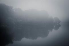 Obscured (Joe_R) Tags: water lakeelkhorn columbia fog maryland unitedstates blackandwhite bw monochrome reflection lake mist morning