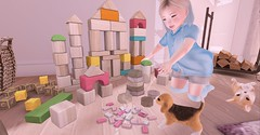 Playing with blocks (Emery/Teagan Parker) Tags: lulabelle thimble blocks roost lagom half deer minime corgi playing with