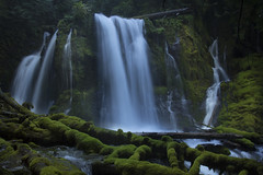 Downing Creek Falls, Oregon (Bonnie Moreland (free images)) Tags: downing creek oregon waterfall green logs rock cliff slow motion