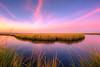 Tranquility Tones (gregmolyneux) Tags: 14mm cedarrundockroad hdr landscape marsh sunset