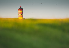Lighthouse at the North Sea Germany (hardy-gjK) Tags: landscape landschaft nordsee north sea germany deutschland leuchtturm hardy nikon