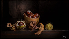 An Autumn Bounty (Simon Caplan) Tags: stilllife classicstilllife renaissancestylelighting lightsculpting lightsculpted torchlight autumn autumncolours conkers horsechestnut leaves darklight texture