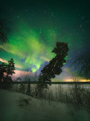 Afterglow (dnikishovphoto) Tags: aurora polar polarlights north northern lights winter tree landscape night nature glow green sky colorful colors color arctic snow travel travelcapture travelshot longexposure