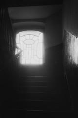Staircase window II (Bohdan Bobrowski) Tags: fomapan 400 artnouveau secesja salve niegolewskich poznań posen stairs starcase w17 hydrogen framed smileonsaturday