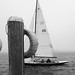 Sailboat on a Foggy Afternoon