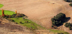 Oasis (JLM62380) Tags: morocco landscape maroc paysage champs fields