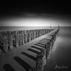 From The Shore Into The Sea III (Alec Lux) Tags: bw bnw nieuwvliet art beach black blackandwhite breakwater coast coastline exterior fine fineart haida haidafilters landscape longexposure nature netherlands ocean outdoor outside poles sand sea seascape white