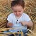 Dans les champs de blé - Tiago <3