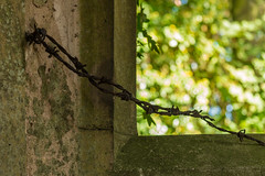 Barbed wire and bokeh (Patricia Wilden) Tags: northburlingham urexp abandoned ruin church ©patriciawilden2019 architecture derelectchurch patriciawilden stpeter norfolk eos70d barbedwire bokeh metal window churchruin explore92