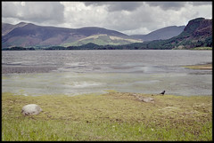 11th of May 2019 (Paul of Congleton) Tags: may 2019 derwentwater lakedistrict cumbria england uk lake shore hills crow water olympus om4ti 35mm colour negative film