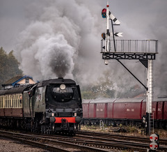 37092 (Peter Leigh50) Tags: west country 34092 bullied swithland great gcr central railway railroad rail train trees track autumn gala steam locomotive engine fujifilm fuji xt2