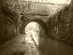 Occupation Bridge, Rose Hill Cutting, Marple    (sepia version)   (Peak Forest Canal)   September 2019 (dave_attrill) Tags: bridge occupation rosehill cutting formertunnel marple peakforest canal towpath peakdistrict nationalpark cheshire cheshirering oldknow september 2019 thomastelford sepia