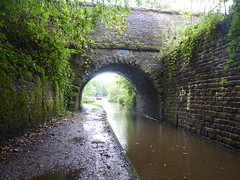Occupation Bridge, Rose Hill Cutting, Marple    (Peak Forest Canal)   September 2019 (dave_attrill) Tags: bridge occupation rosehill cutting formertunnel marple peakforest canal towpath peakdistrict nationalpark cheshire cheshirering oldknow september 2019 thomastelford
