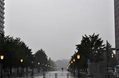 Tokyo in rain (DameBoudicca) Tags: tokyo tokio 東京 japan nippon nihon 日本 japón japon giappone marunouchi 丸の内 rain regen regn pioggia pluie lluvia 雨 あめ silhouette siluett silueta シルエット