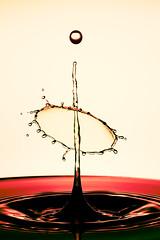 Short moments remain in our memory - Kurze Momente bleiben in unserer Erinnerung (TS Lichtreise) Tags: rot drop wassertropfen tropfen makro macro splash spritzer studio hightspeed speed