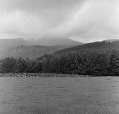 20190926-PentaxMX-000096300009-MournesBW (Lindsay Pennell) Tags: bw fp4 ireland mx mourne northernireland pentax trees cloud hill rock wall