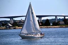 COME SAIL AWAY (MIKECNY) Tags: sail sailboat travel summer nautical water newport rhodeisland bridge
