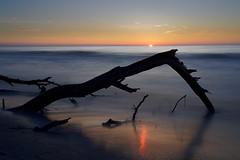 Tranquillité (alterahorn) Tags: dars darserurwald strand sonnenuntergang ostsee balticsea loxia235 e availablelight