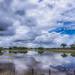 Los Llanos en Apure I...