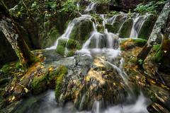 Plitvice Water Lines