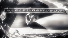 Harley #470_mono (dougkuony) Tags: hdr harleydavidson bike motorcycle