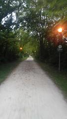(sfrikken) Tags: villa park illinois dupage county bicycle rain prairie path bike