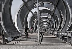 Ciclistas en la espiral (Rabadán Fotho) Tags: blancoynegro bn blackandwhite fotografia foto photo puntodefuga blak monocromatico monocromo monocromático monocrome monocromatique monocrómo