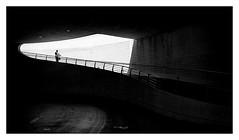 La llum sempre la llum (Vicent Granell) Tags: granellretratscanon valència cac mirada visió composició percepció personal bn bw minimalism