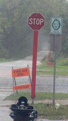 (sfrikken) Tags: illinois dupage county bicycle rain prairie path bike lombard