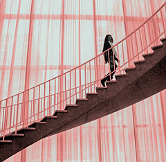 A Small Step Upwards (Rich Levine) Tags: chicago artinstitute girl steps staircase flair