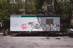 for.the.time.being (jonathancastellino) Tags: toronto vernacular street graffiti trailer road leica q tree trees series