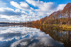 Vvedenskoe Lake (gubanov77) Tags: nature autumn lake sky clouds reflection russia vvedenskoelake pokrov vvedensky vladimiroblast october colors blue landscape