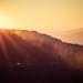 Gold sunrise on the Blue Ridge Parkway
