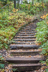 stairway to autumn (jimmy_racoon) Tags: 70200 f4l is canon 5d mk2 north shore temperance river state park 2019 fall autumn minnesota nature steps 70200f4lis canon5dmk2 northshore temperanceriverstatepark