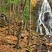 Hay Autumn Falls