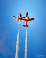 It takes two to tango (Dan Haug) Tags: snowbirds ct114tutor canadair aerogatineauottawa airshow september 2019 xf100400mmf4556rlmoiswr xt3 xf100400mm fujifilm fujixseries mirrorless rcaf royalcanadianairforce explore explored