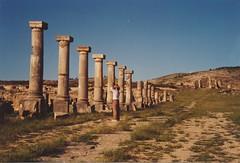 Volubilis (ribizlifozelek) Tags: morocco ruins roman empire volubilis unescoworldheritage prakticabx20